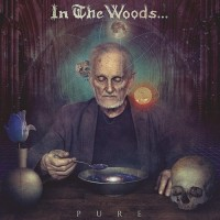 IN THE WOODS - Pure CD DIGIPAK